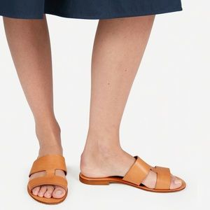 Everlane Bridge Sandal